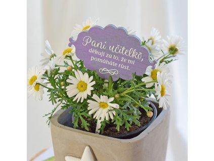 Dřevěný zápich do květináče pro paní učitelku