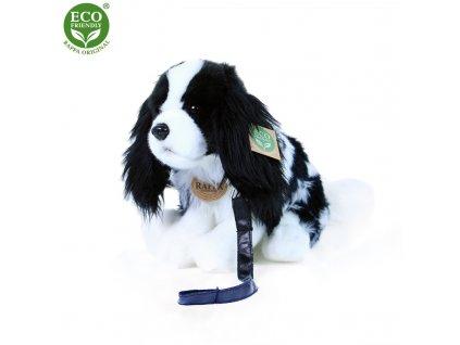 Plyšový pes kavalier s vodítkem 27 cm ECO-FRIENDLY