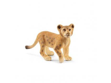 Zvířátko - lví mládě