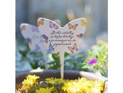 Zápich s motýly - Skvělé učitelky