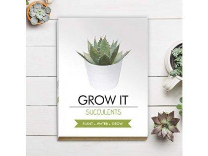 Grow it - sukulent