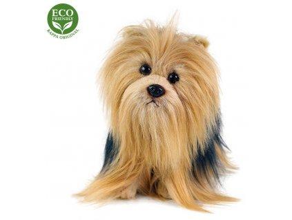 PLYŠ Pes jorkšír stojící 30cm Eco-Friendly *PLYŠOVÉ HRAČKY*