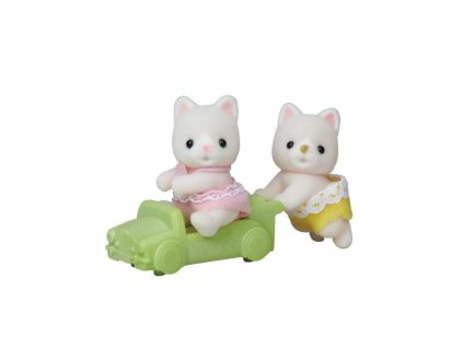 Dvojčata Hedvábné kočky