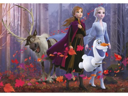 DINO Puzzle XL Frozen II (Ledové Království) 300 dílků 47x33cm skládačka