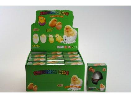 Vejce Kuřátko