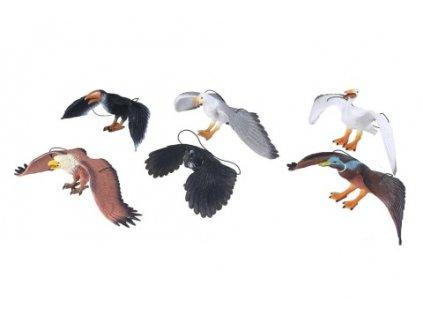 Pták gumový
