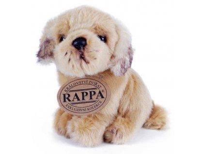 PLYŠ Pes sedící 11cm Eco-Friendly různé druhy *PLYŠOVÉ HRAČKY*