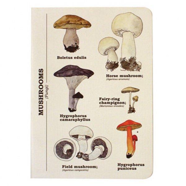 Dudlu Blok s houbami