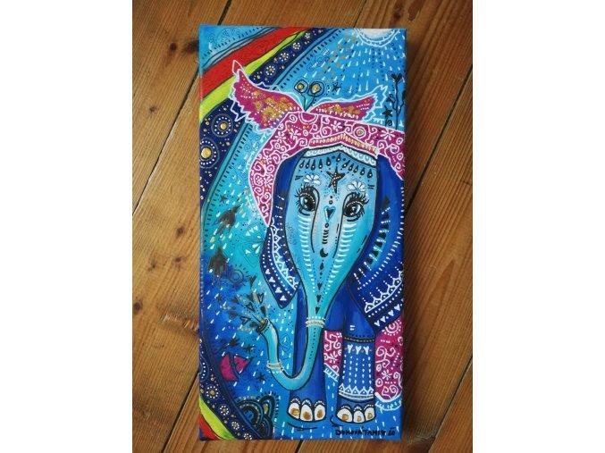 Sloní slečinka