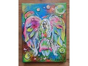 Duhový Anděl