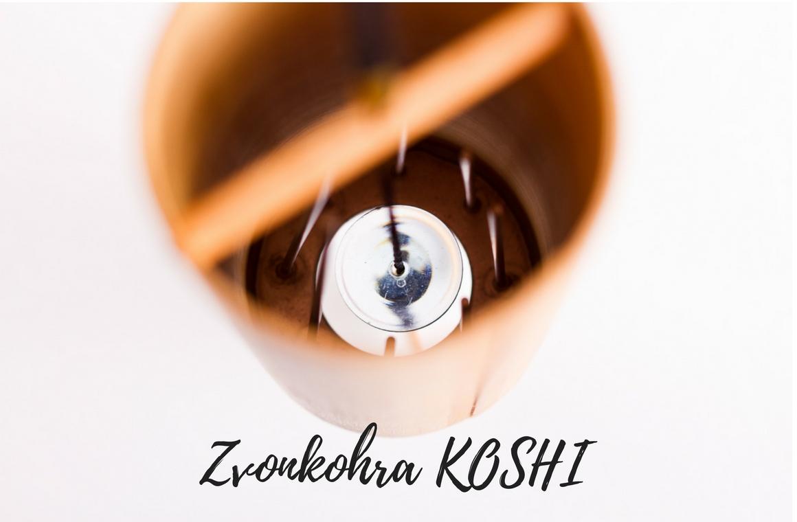 Zvonkohra Koshi