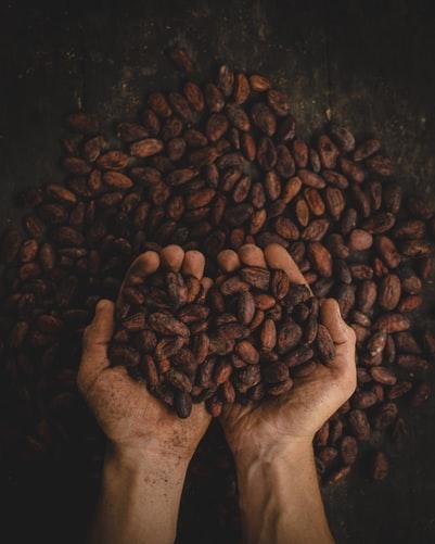 Kakao – superpotravina, kterou byste se měli rozmazlovat na denní bázi.