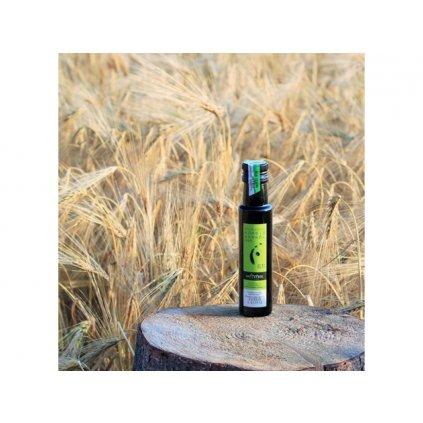 Štýrský dýňový olej prémiové kvality