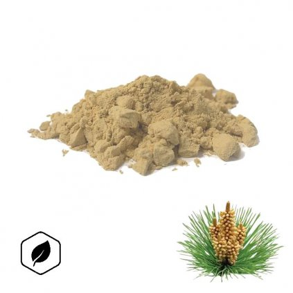 borovicový extrakt
