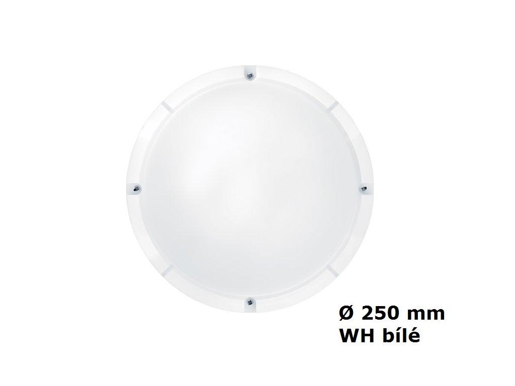 LED Nástěnné a stropní svítidlo THORNeco LARA WH 250 800 840 IP65 10W 4000K 96666101 bílé