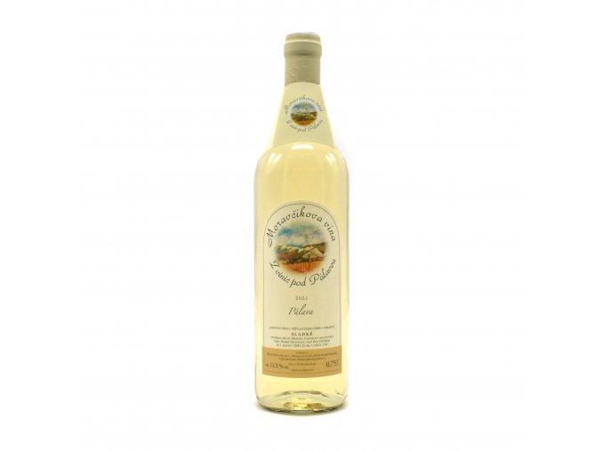 moravcikova vina 2020 dum vina na saldaku liberec15
