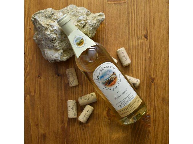 moravcikova vina 2020 dum vina na saldaku liberec19