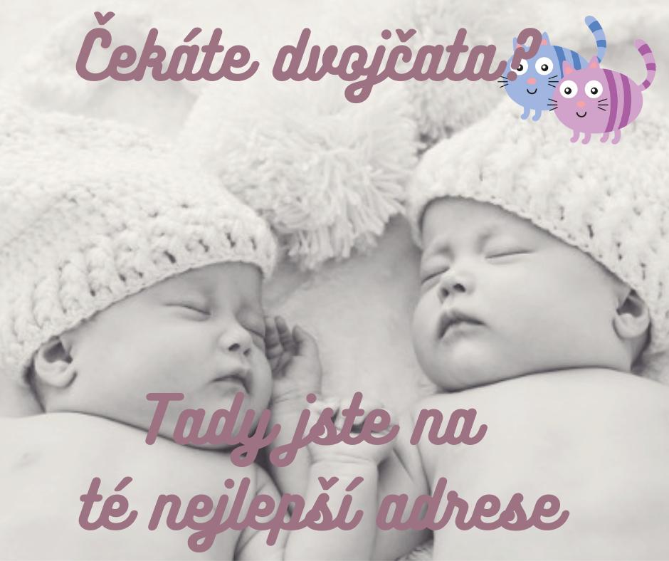 Titul dvojcatka.cz 2