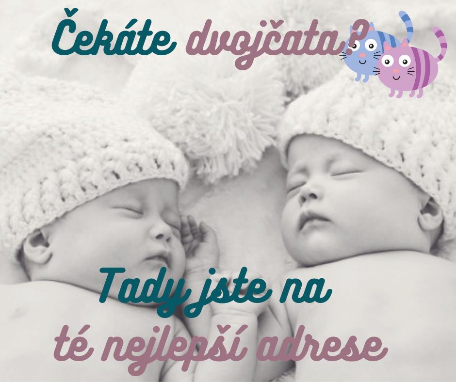 Titul dvojcatka.cz 3