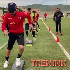 TRENINK