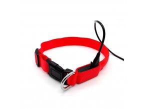 Red led dog collar TZ PET2110U (23)