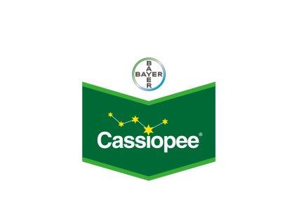 Cassiopee 79 WG 6 kg
