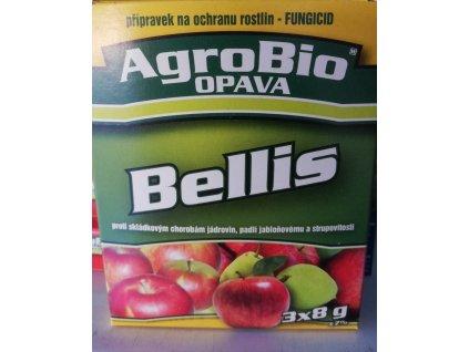Bellis 3x8 g