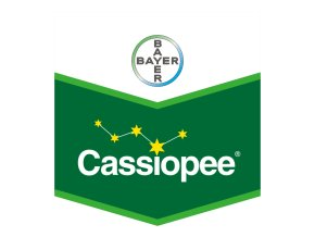 Cassiopee 79 WG 6 kg