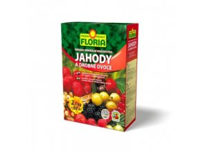 floria hnojivo pro drobne ovoce 25kg