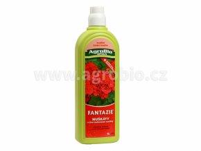 fantazie muskaty a balkonove rostlin