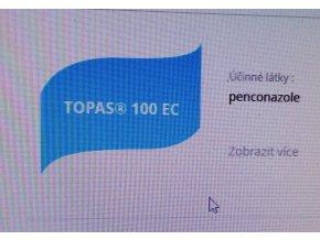 Topas_padli