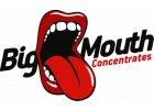Příchuť Big Mouth S&V