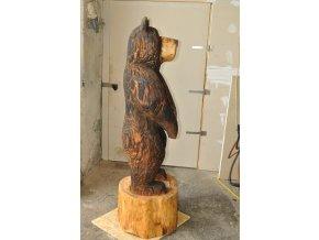 Medvěd (2)