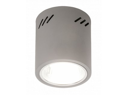 Rabalux 2485 Donald, stropní svítidlo