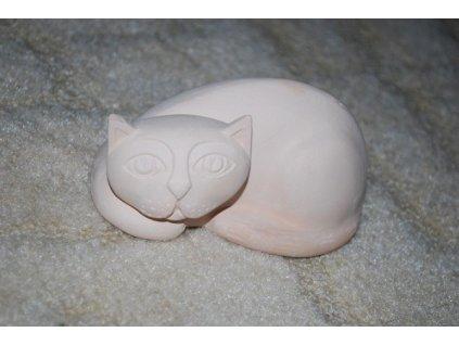 forma kočka1