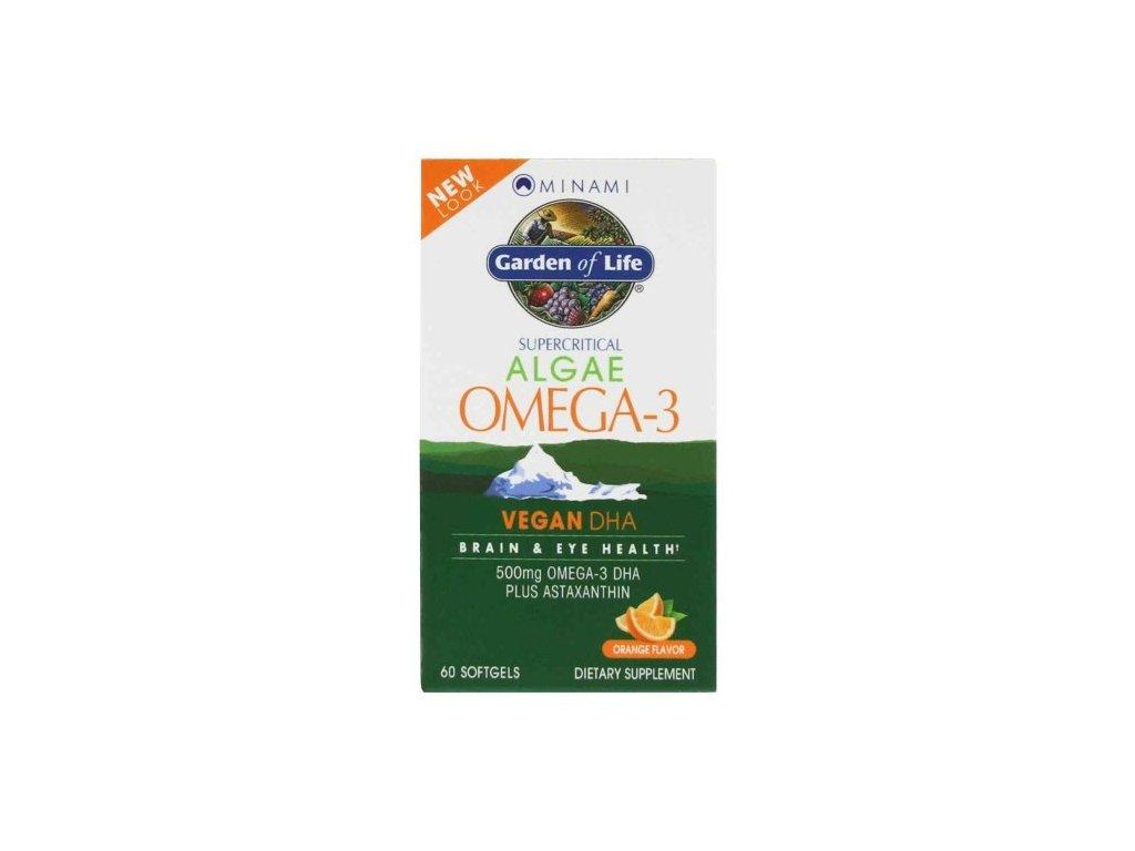 Omega 3 vegan dha 500x600