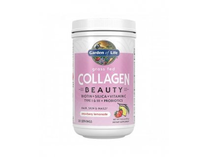 Collagen beauty jahoda a citron kolagen 270g 500x600