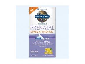 Prenatal Omega 3 500x600