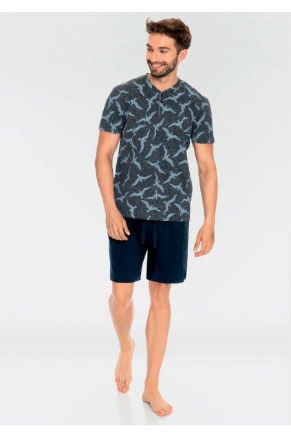 Pánské bavlněné pyžamo MNS 741
