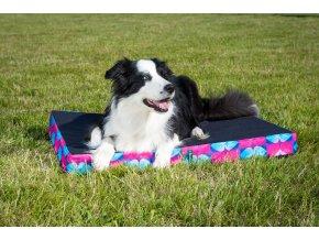 Matrace GINO – pelíšek pro velkého psa