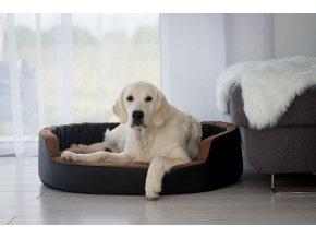 Pelíšek pro psa Molly