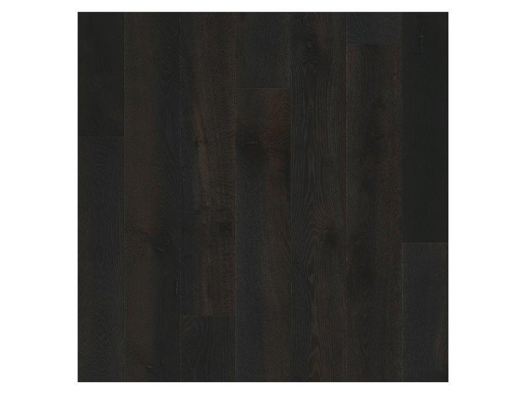 Půlnoční dub olejovaný