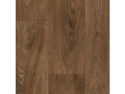 Burned wood 45 14551
