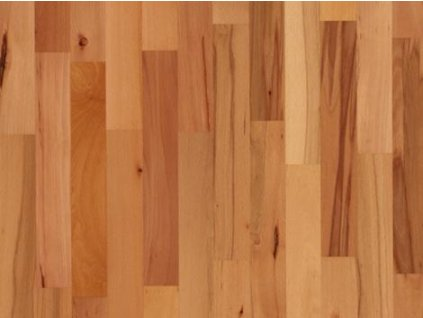 Dřevěná podlaha - Buk pařený struktur lak (Scheucher) - dvouvrstvá