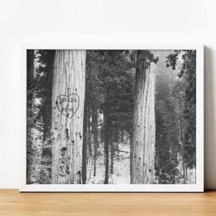 Vlastní potisk - Obraz jména vyrytá do stromu