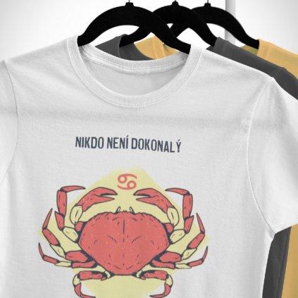 Pánské/Dámské tričko Nikdo není dokonalý - rak