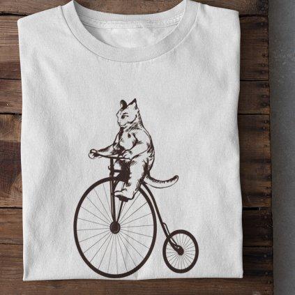 Kočka na vysokém kole