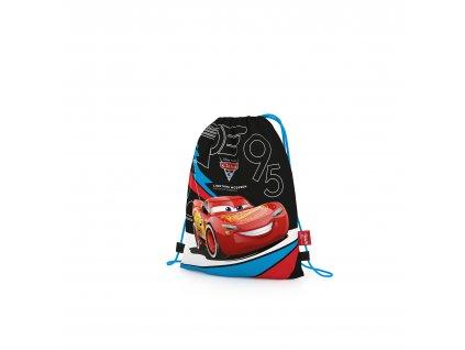 1 06217 karton pp cars17 shoe bag 3D front