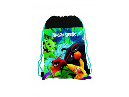 3 882 karton pp angry birds16 movie shoe bag front