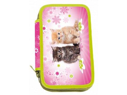 Dvoupatrový penál Cats